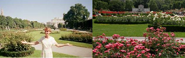 Literarischer Rosengarten